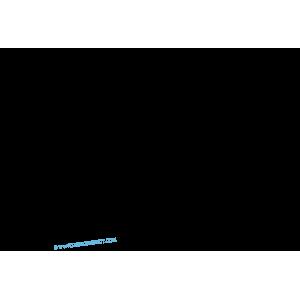 LABRADOR Poil long