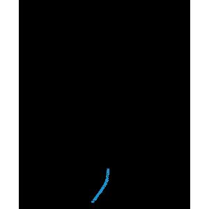 CERF Profil