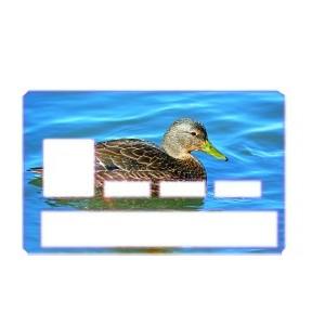 Carte de crédit Cane